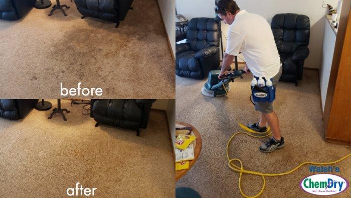 Carpet Cleaning San Rafael Novato Ca Walsh S Chem Dry